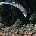 Paragliding Hazards by Susan Herber