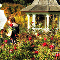 Parasol In Rose Garden by Mindy Bench