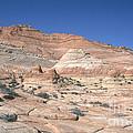 Paria Canyon-vermilion Cliffs by David Davis