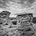 Paria Sandstone by Leland D Howard