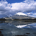 Parincota Lauca National Park Andes by Tui De Roy