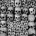 Paris Catacombs by Inge Johnsson