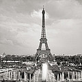 Paris Eiffel Tower by For Ninety One Days