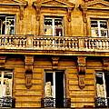 Paris Facade by Ira Shander