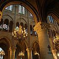 Paris France - Notre Dame De Paris - 01134 by DC Photographer