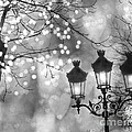 Paris Christmas Sparkle Lights Street Lanterns - Paris Holiday Street Lamps Black and White Lights by Kathy Fornal