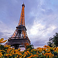 Paris In The Spring by Dustin  LeFevre