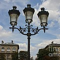 Paris Lamp Post by Carol Groenen