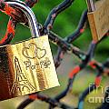 Paris Love Lock by Olivier Le Queinec