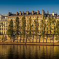 Paris Morning by Mark Llewellyn