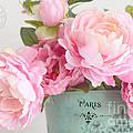 Paris Peonies Shabby Chic Dreamy Pink Peonies Romantic Cottage Chic Paris Peonies Floral Art by Kathy Fornal