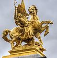 Paris Statue by Ioan Panaite
