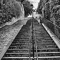 Paris Steps by Georgia Fowler