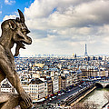Parisian Gargoyle Admires The Skyline by Mark E Tisdale