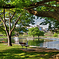 Park Bench By A Lake by Larry Braun