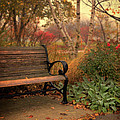 Park Bench In Autumn by Jill Battaglia
