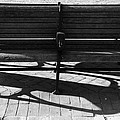 Park Bench by Paul Wilford