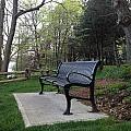 Park Bench by Pema Hou