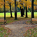 Park Bench by Frozen in Time Fine Art Photography