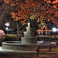 Park Bench by Tony  Colvin