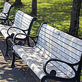 Park Benches At Portland Waterfront Park by Jit Lim