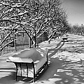 Park Benches Snow Upholstered by Gene Sherrill