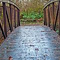 Park Bridge by Tikvah's Hope