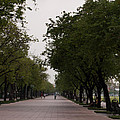 Park Leading To The King Of Thailands Palace by Jill Mitchell