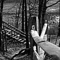 Park Trail Bw by Pablo Rosales