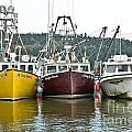 Parked Fishing Boats by Cheryl Baxter