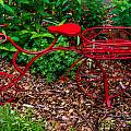 Parked Red Bicycle by Douglas Barnett