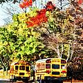Parked School Buses by Susan Savad