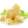 Parmesan Cheese by Elena Elisseeva