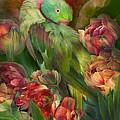 Parrot In Parrot Tulips by Carol Cavalaris