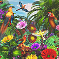 Parrot Jungle by Caplyn Dor