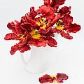 Parrot Tulips In A Milk Jug by Ann Garrett