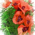 Partial To Poppies by Lorraine Keil