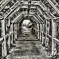 Partington Cove Tunnel By Diana Sainz by Diana Raquel Sainz
