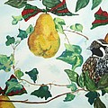 Partridge And  Pears  by Reina Resto