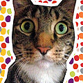 Party Animal- Cat With Confetti by Linda Woods