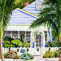 Pass-a-grille Cottage Watercolor by Michelle Wiarda-Constantine