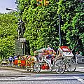 Passenger Cars Only - Central Park by Madeline Ellis