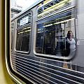 Passing Trains by Rosanne Licciardi