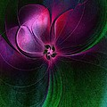 Passion Flower by Amanda Moore