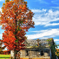 Past Its Prime I - A Barn In The Fall by Dan Carmichael