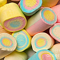 Pastel Colored Marshmallows by Amy Cicconi