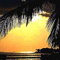 Pastel Hue In Key West by Susanne Van Hulst