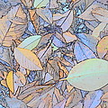 Pastel Leaves by Charles Majewski