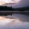 Pastel Morning Mist by Mike  Dawson