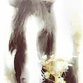 Pastel Pony by Hal Halli